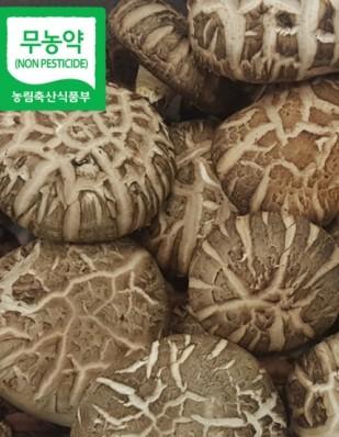 무농약 특 표고버섯 1kg